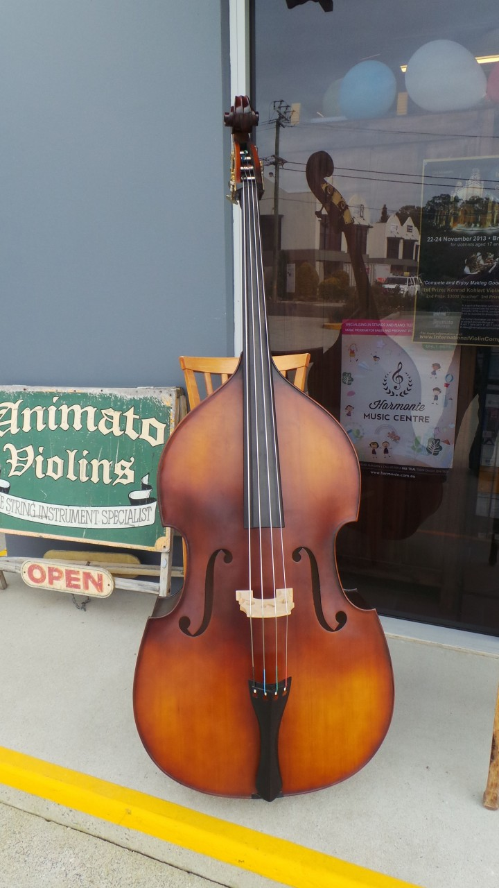 Arco Double Bass